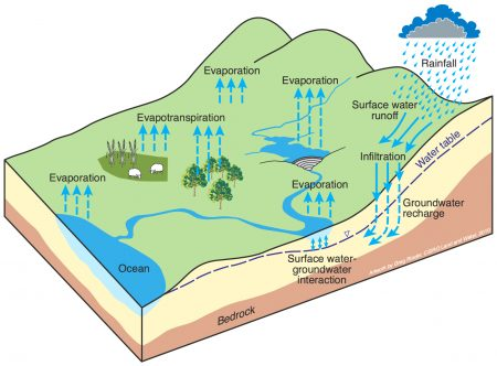 Figure 1. Hydrological water cycle.